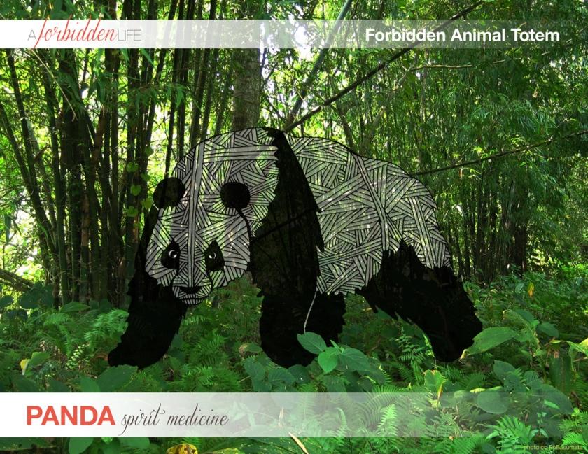 panda-animal_totem-cover